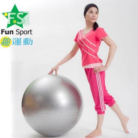 《Fun Sport》平面抗力球(65CM)台灣生產(銀)-