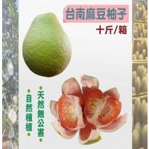 台南麻豆柚子(十斤/箱) 自然種植 天然無公害 水果 柚子 中秋