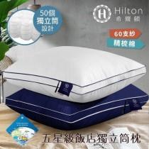希爾頓五星級獨立筒枕頭 立體彈力 蓬鬆飽滿 立體雙滾邊 高效能彈簧 獨立筒彈簧