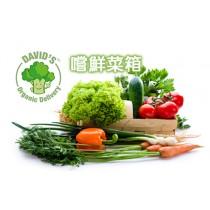 【冷藏專區】大衛家 9道菜 嚐鮮菜箱 葉菜 有機驗證 全新生活 排毒 飲食 有機蔬果箱